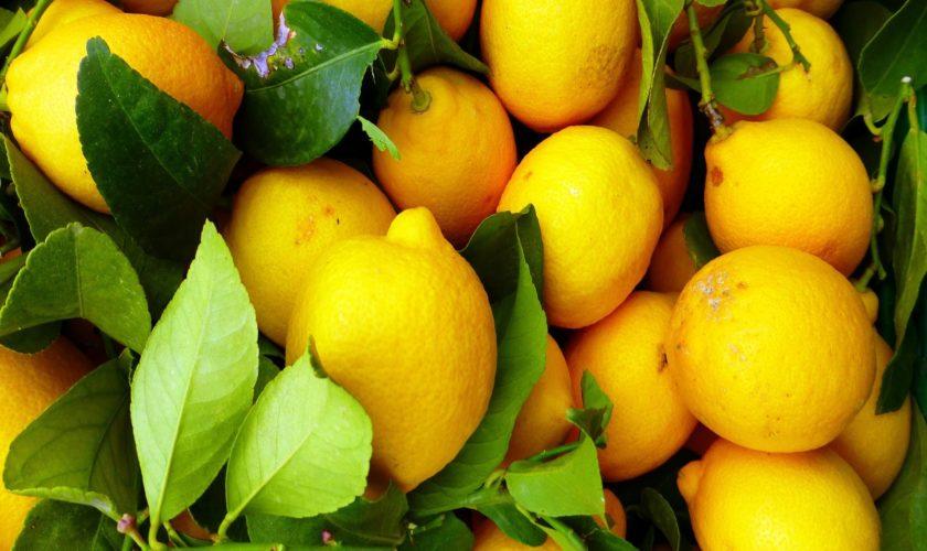 Detossificarsi con la dieta del limone