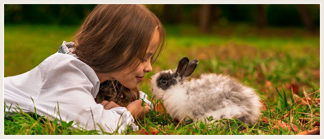 Come diventare naturopata veterinario
