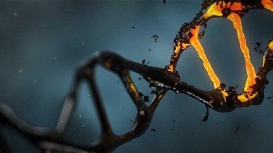 Come ridurre il rischio di malattie genetiche
